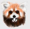 panda_abroad